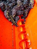 Red grape mixing machine — Stock Photo