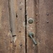 Old wood door — Stock Photo #13375280
