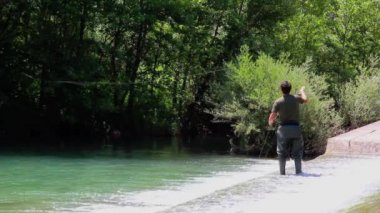 Fisherman casting during fly fishing, while standing on the rapids water stream with green foliage wood background — Stock Video