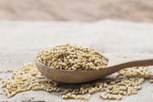 Wood spoon with whole wheat grains — Stock Photo