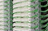 Connection modules with jumper wires — Stock Photo