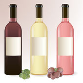 Bottles of wine — Stock Vector