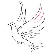 Dove sketch — Vector de stock