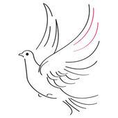Schizzo di colomba — Vettoriale Stock