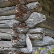 Corner of an old log house. - Stockfoto