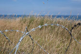 Barbed in Normandie — Stock Photo