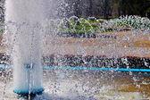 Fontaine de l'été — Photo