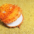 Stock Photo: Orange shell