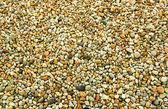 Sea pebbles — Stock Photo