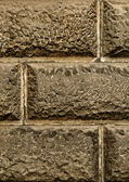 The texture of stone — Stock Photo