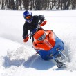 Snow Hawk sliding in the snow — Stockfoto