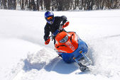 Snow Hawk sliding in the snow — Stock Photo