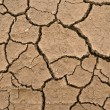 Dried and cracked earth - global warming danger — Stock fotografie