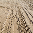 Tractor wheel tracks in golden beach sand - Stockfoto