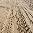 Tractor wheel tracks in golden beach sand - ストック写真