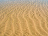Sand ripples in a beach in summer — Stock Photo