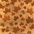 Autumn background illustration made with platanus leaves — Stock Photo