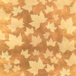 Autumn background illustration made with platanus leaves — Stock Photo #13318623