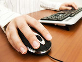 Businesswoman typing in the computer keyboard and using a mouse — Stock Photo