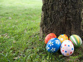 Huevos de pascua escondidos detrás de un tronco de árbol — Foto de Stock