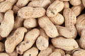 Background made of roasted peanuts — Stock Photo