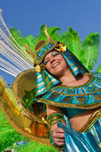 Member of the Ala section of a Samba School in the Brazilian Carnival — Stock Photo