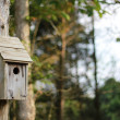 Rustic birdhouse on a pole — Stock Photo