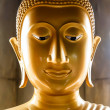 Buddha Head — Foto Stock #18701617