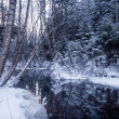 Reflections on Wintry River — Stock Photo #39706887