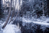 Reflections on Wintry River — Stock Photo