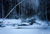 Winter Night at the River — Stock fotografie