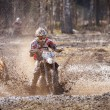 Постер, плакат: Motocross driver in mud