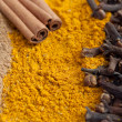 Cinnamon sticks and cloves on ground cinnamon and curry — Stock Photo