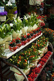 Flowers on the market — Stock Photo