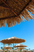 View from under a beach parasol — Stock Photo