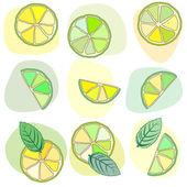 Citrus mojito pattern — Stock Vector