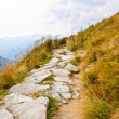 Path in Tatra mountains — Stock Photo