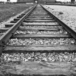Auschwitz-Birkenau concentration camp — Stock Photo #34671583