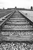 Auschwitz-Birkenau concentration camp — Foto Stock