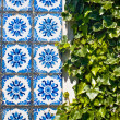 Azulejo tiles and green leaves — Stock Photo #35711581