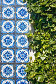 Azulejo tiles and green leaves — Stock Photo
