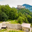 Vineyard and Hohensalzburg castle — Stock Photo