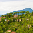 Countryside in Lombardia, Italy — Stock Photo