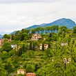 Countryside in Lombardia, Italy — Stock Photo #39271283