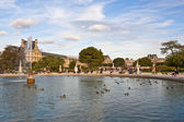 Tuileries Garden in Paris — Stock Photo