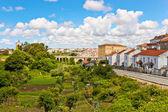 Vegetable gardens on the street of Vila Nova de Gaia, Porto, Por — Stock Photo