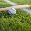 Stock Photo: Baseball bat and ball in grass by field stripe