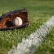 Baseball mitt and ball in grass by field stripe — Stock Photo #13512513