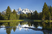 Grand Teton mountains with pond and trees in morning light — Stock Photo