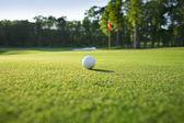Close up van golfbal op groen — Stockfoto